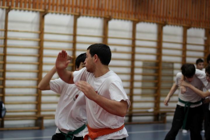 seminar-30-hanuca-2012-082-large-small