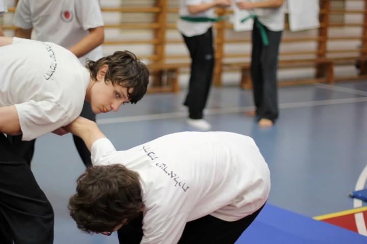 seminar-30-hanuca-2012-087-large-small