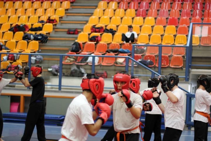 seminar-30-hanuca-2012-185-large-small