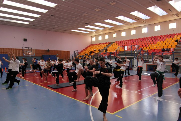 seminar-30-hanuca-2012-237-large-small