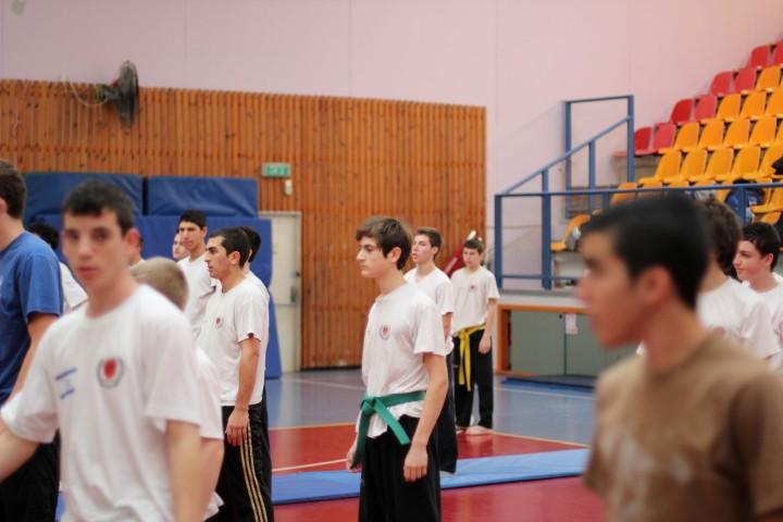 seminar-30-hanuca-2012-250-large-small
