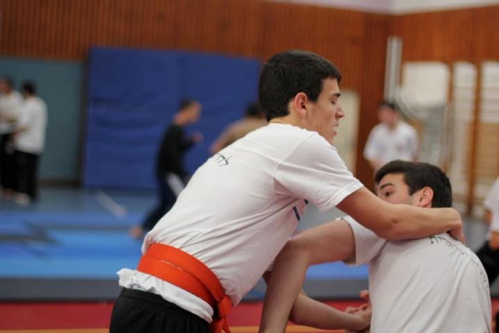 seminar-30-hanuca-2012-301-large-small